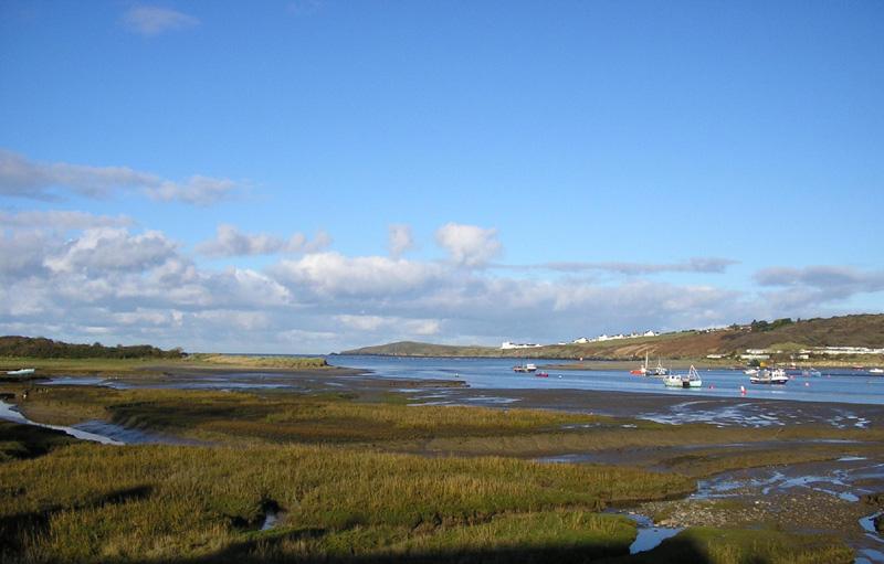 Teifi estuary mud flats